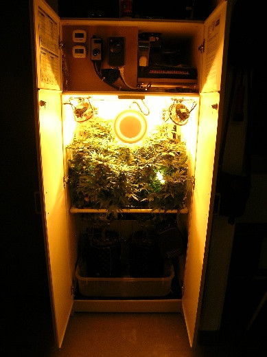 Best ideas about DIY 4Oz Minimum Yield Grow Box . Save or Pin Building an Ultra Stealthy Grow Cabinet Now.