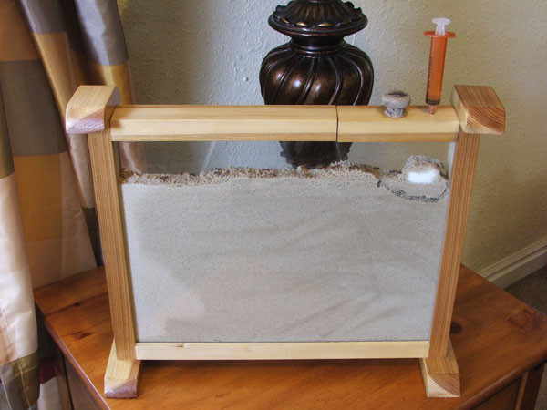 Best ideas about DIY Ant Farm . Save or Pin Classic Toys Ant Farms Now.