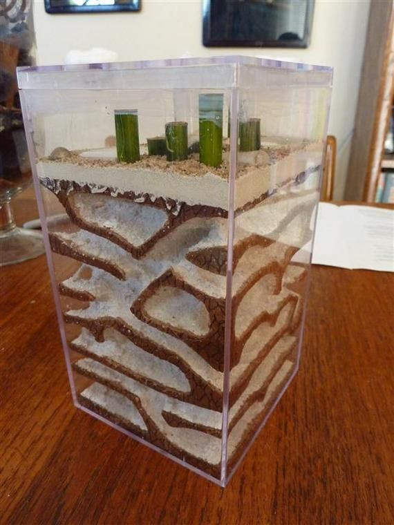 Best ideas about DIY Ant Farm . Save or Pin This is a delux ant farm homemade Now.