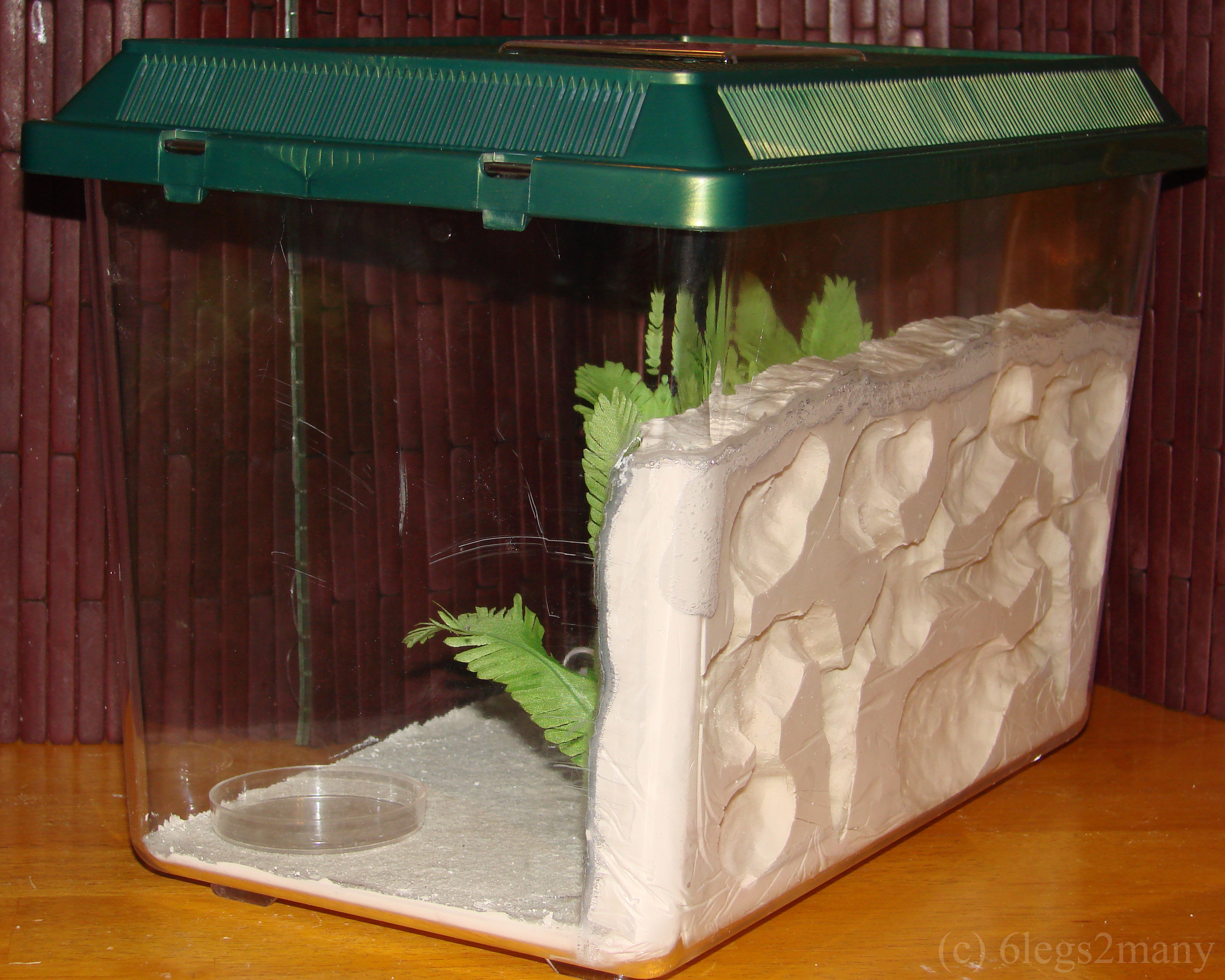 Best ideas about DIY Ant Farm . Save or Pin Ant Farms How to build your own formicarium Now.