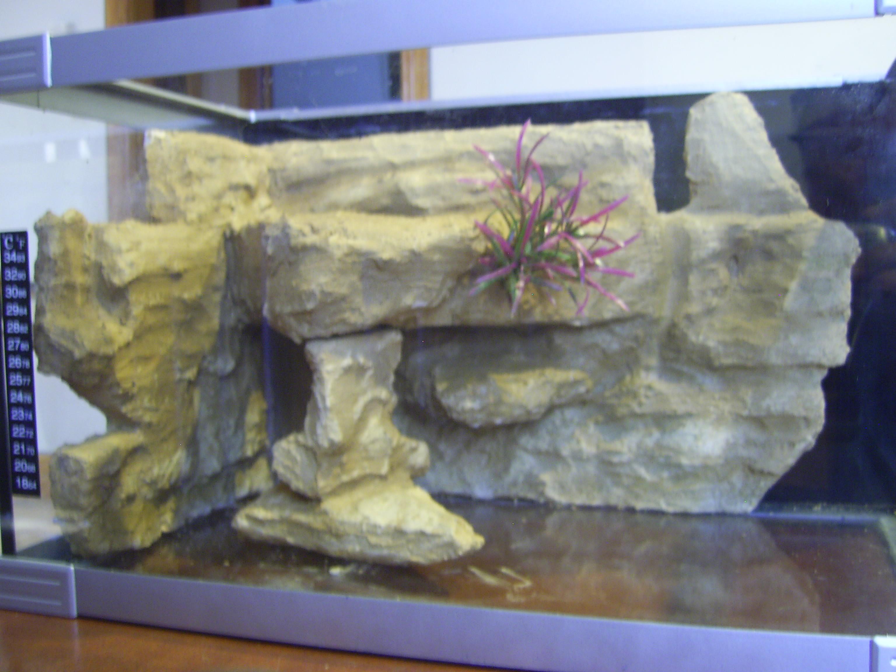 Best ideas about DIY Aquarium Background . Save or Pin cichlids DIY aquarium background Now.