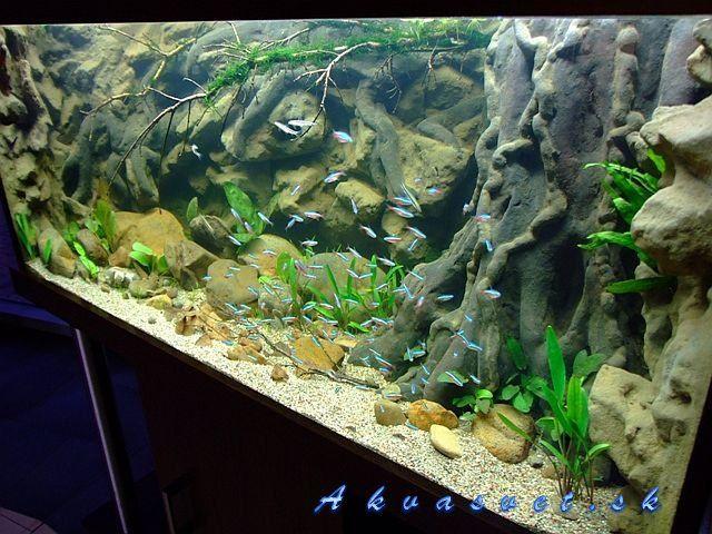 Best ideas about DIY Aquarium Background . Save or Pin diy planted aquarium background Google Search Now.