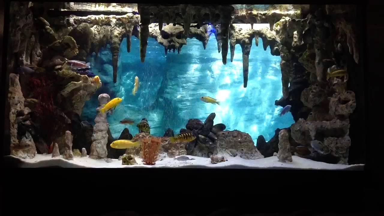 Best ideas about DIY Aquarium Background . Save or Pin DIY Underwater Cavern Aquarium with 3D background Now.