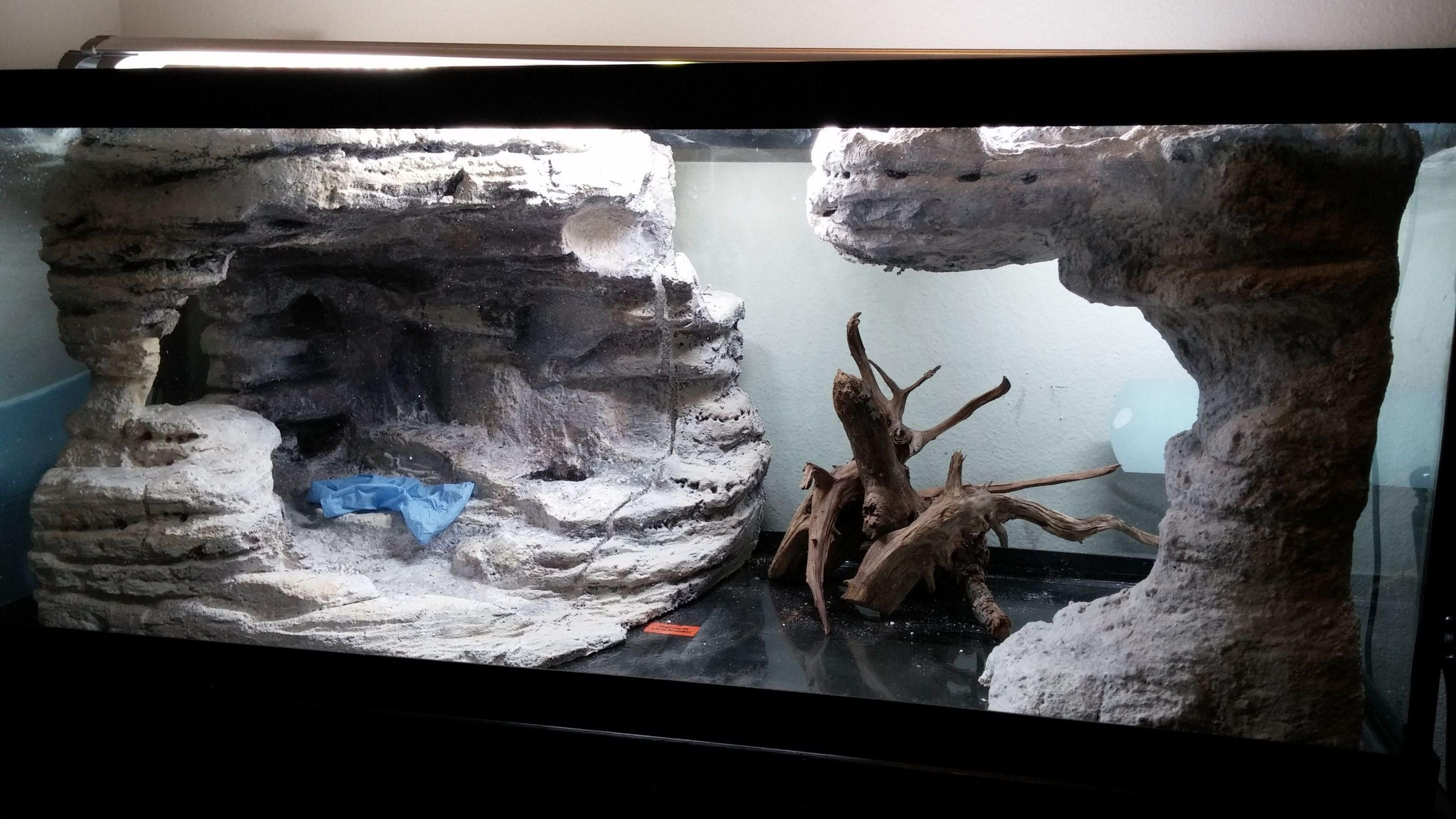 Best ideas about DIY Aquarium Background . Save or Pin 75 gallon DIY background thingy small update 2 13 The Now.