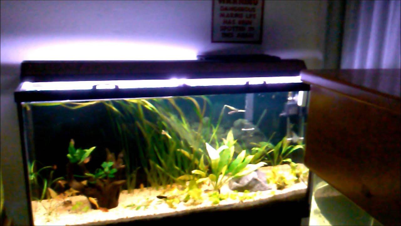 Best ideas about DIY Aquarium Lid . Save or Pin How to Easy DIY Sliding Glass Aquarium Top Hood Now.