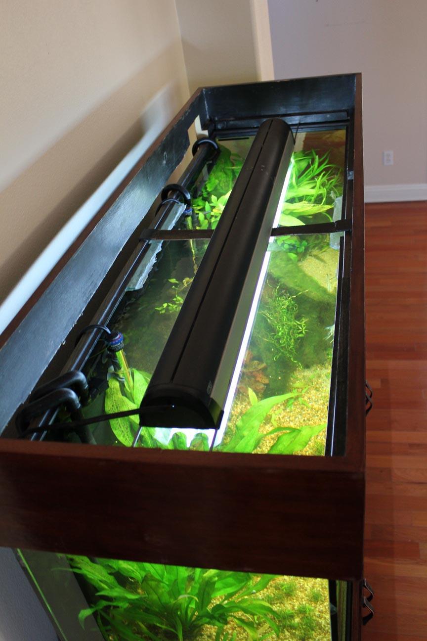 Best ideas about DIY Aquarium Lid . Save or Pin Aquarium Design Ideas Now.