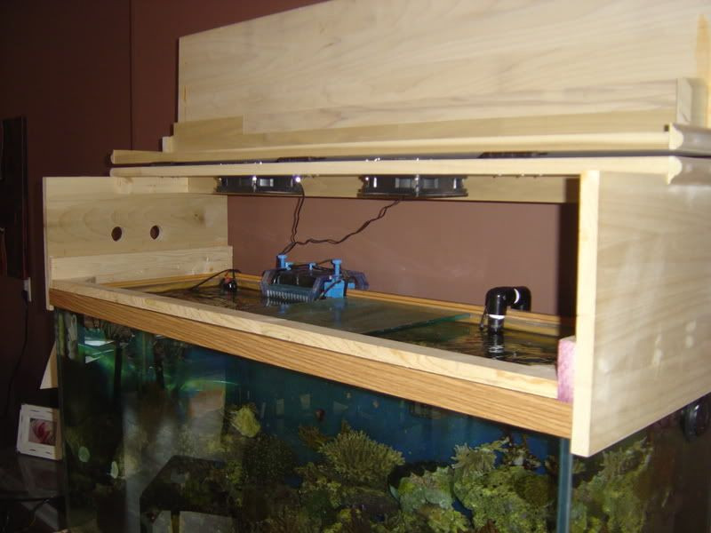 Best ideas about DIY Aquarium Lid . Save or Pin DIY Canopy do most of you build the canopy to rest on Now.