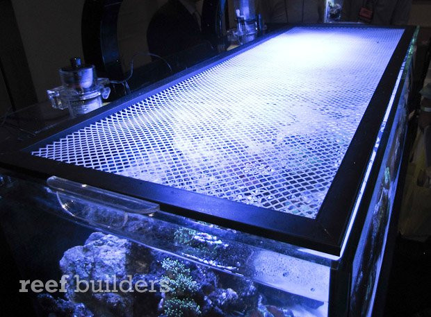 Best ideas about DIY Aquarium Lid . Save or Pin New Marine Depot video shows how to make an attractive Now.