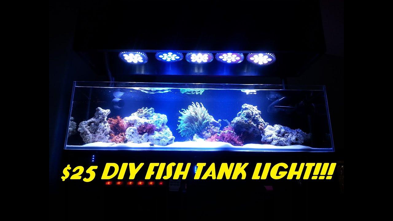 Best ideas about DIY Aquarium Light . Save or Pin $25 DIY Fish Tank Light ABI 12 Watt Blue White Par38 Now.