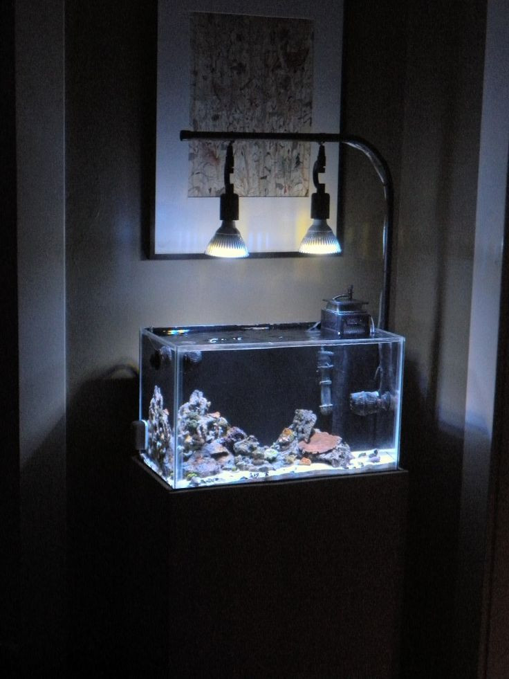 Best ideas about DIY Aquarium Light . Save or Pin 46 best My Amazing Aquarium Lighting images on Pinterest Now.