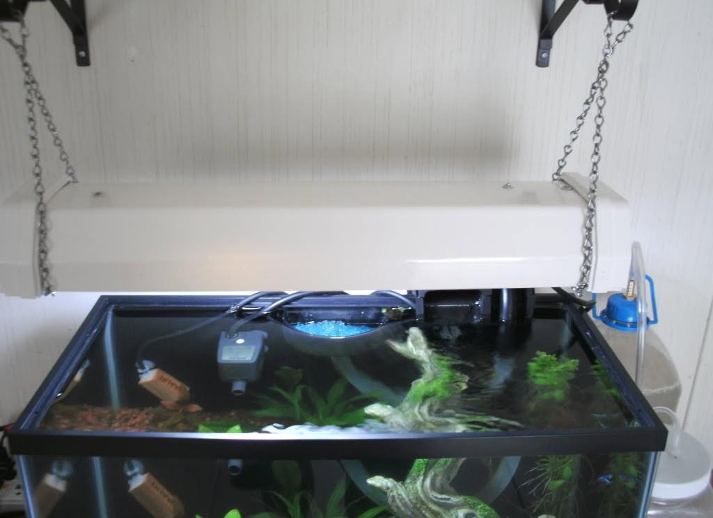 Best ideas about DIY Aquarium Light . Save or Pin DIY Wall Mounted Aquarium Light petdiys Now.