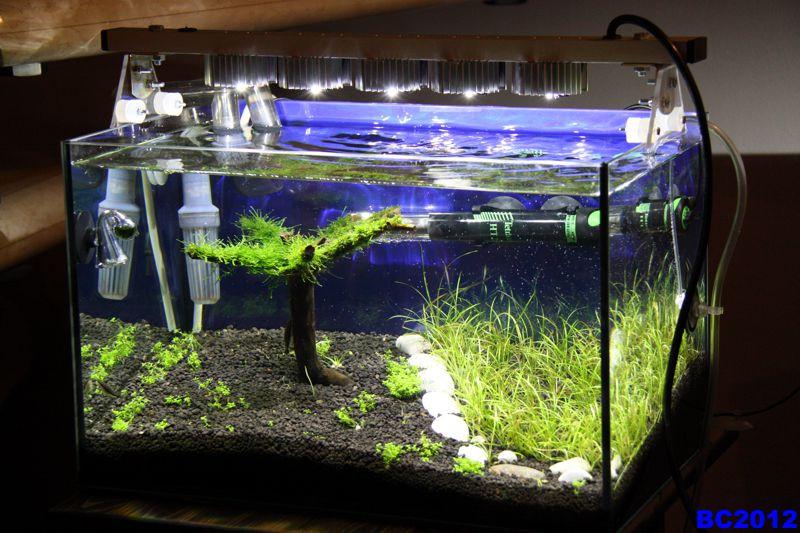Best ideas about DIY Aquarium Light . Save or Pin Unusual and Creative diy aquarium Now.