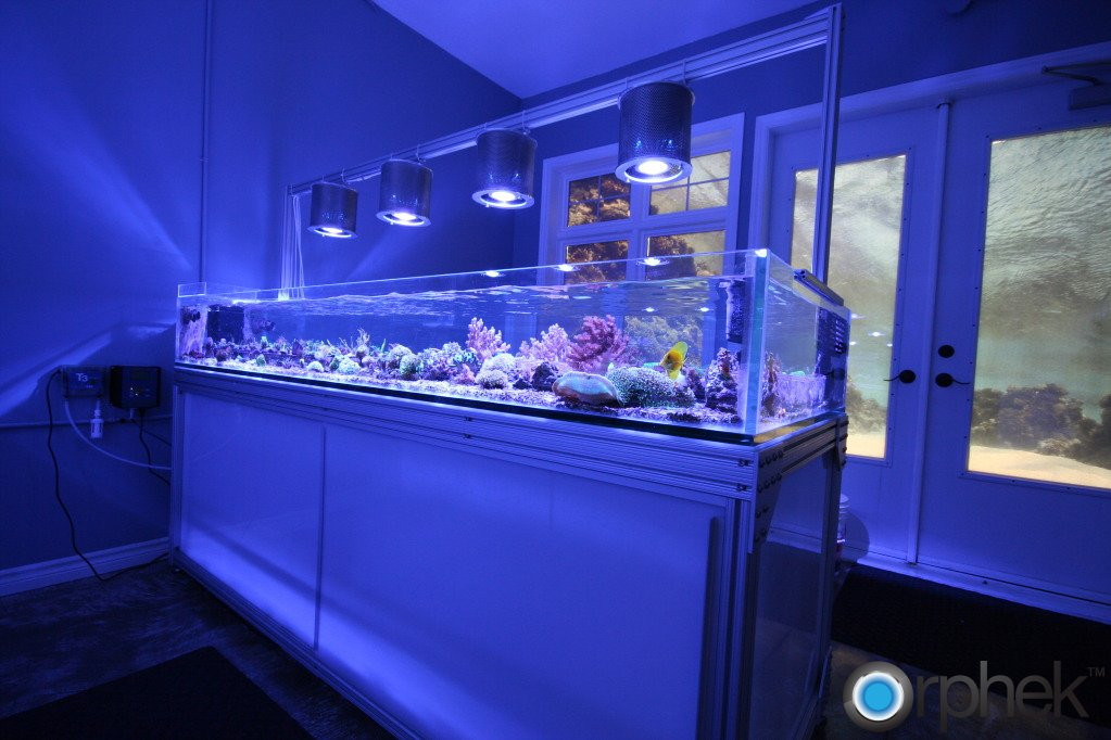 Best ideas about DIY Aquarium Light . Save or Pin Aquarium LED Lighting s Now.