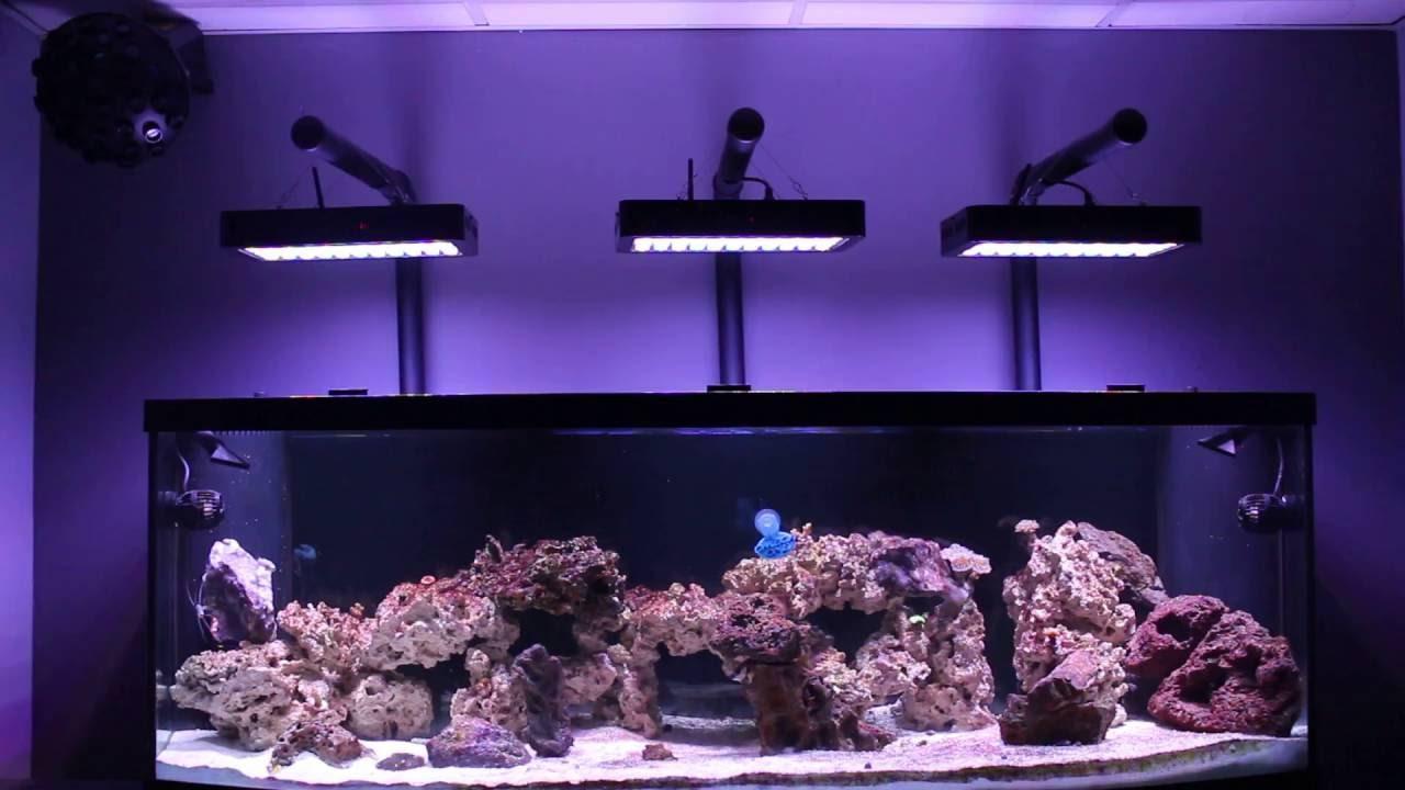 Best ideas about DIY Aquarium Light . Save or Pin MAN CAVE REEF LED EVERGROW aquarium light DIY mounting kit Now.