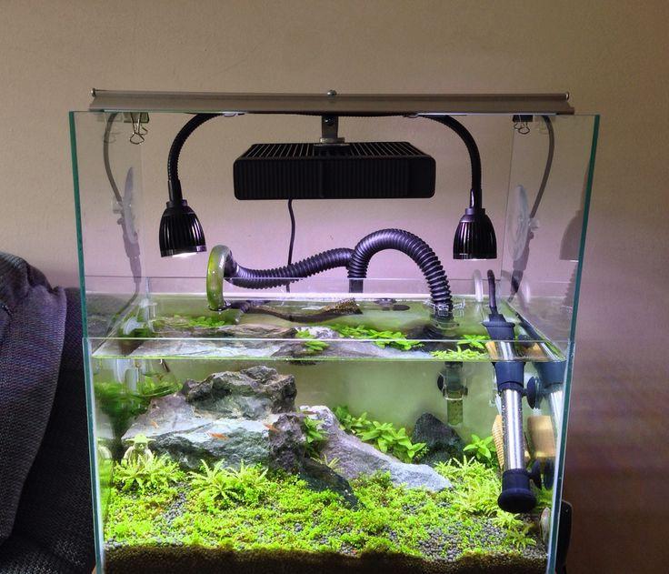 Best ideas about DIY Aquarium Light . Save or Pin DIY light mount using Fluval LED panel plus 2x Deep Blue Now.