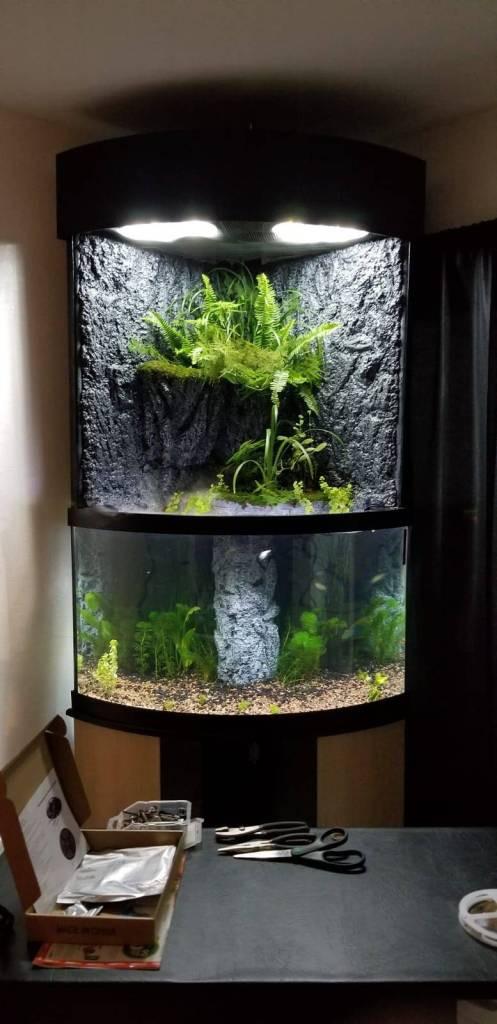 Best ideas about DIY Aquarium Light . Save or Pin Ultimate DIY LED Aquarium Lighting Setup For Cheap Now.