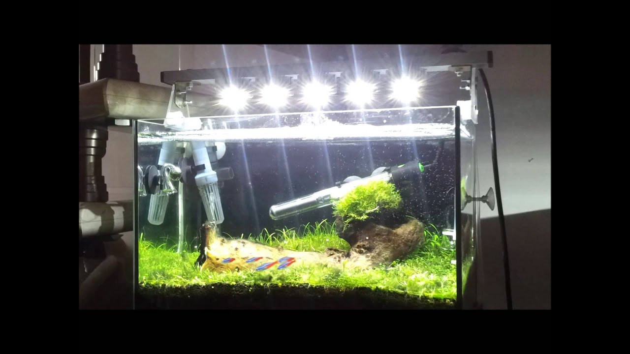 Best ideas about DIY Aquarium Light . Save or Pin Diy dimmable aquarium light led Now.