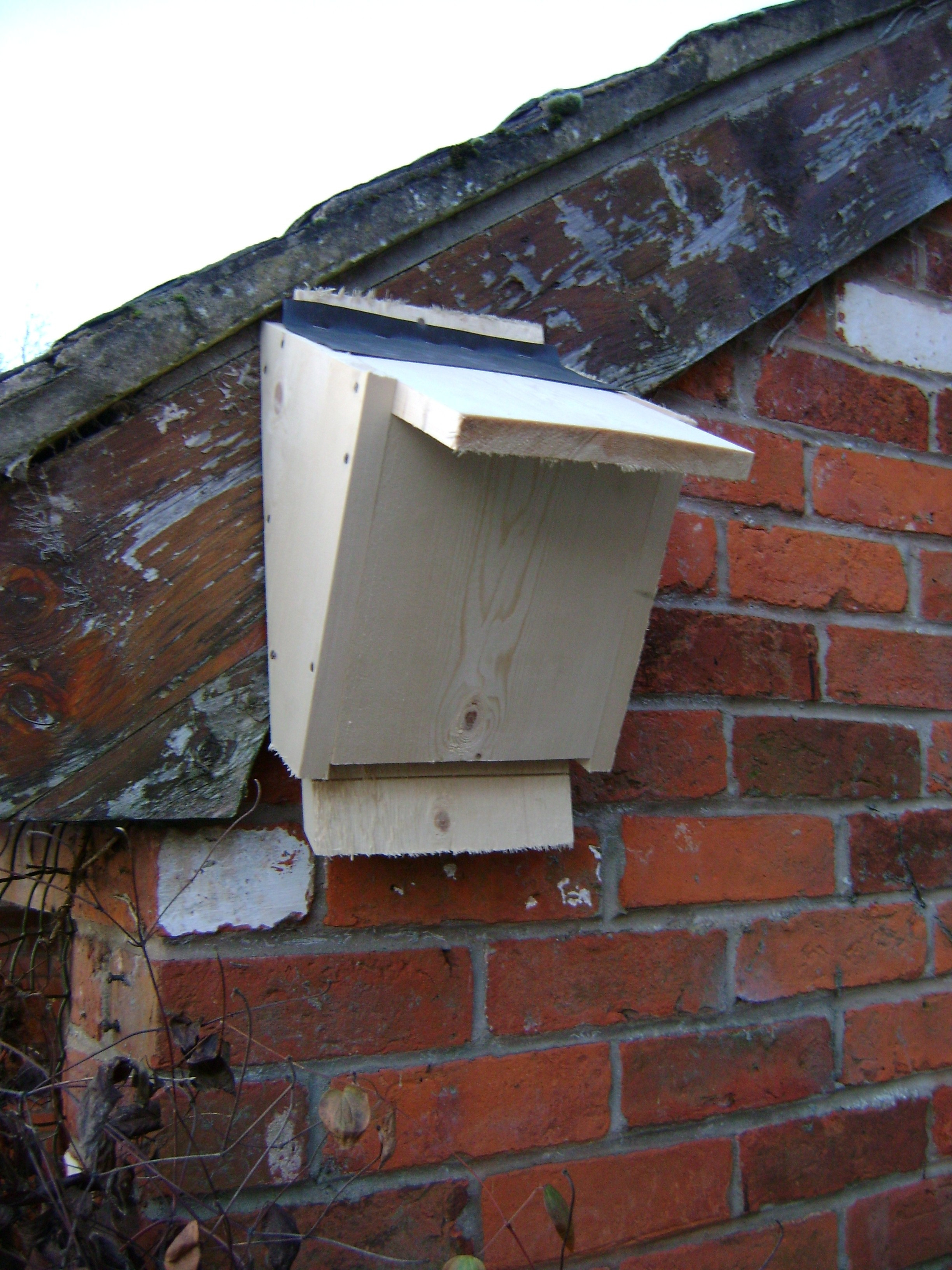 Best ideas about DIY Bat Box . Save or Pin Build a Bat Box Now.