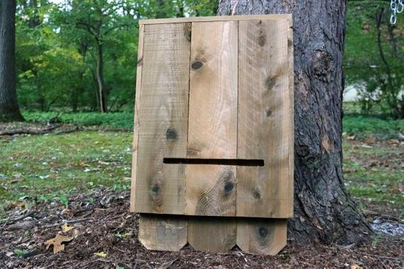Best ideas about DIY Bat Box . Save or Pin Bat house bat cage bird house XLARGE size Now.