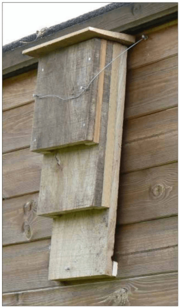 Best ideas about DIY Bat Box . Save or Pin Bat House Ideas Worth Hanging Around For Now.
