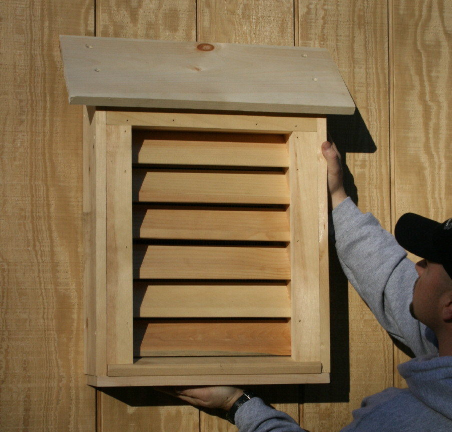 Best ideas about DIY Bat Box . Save or Pin Bat Guys The Suburban Bat House Now.