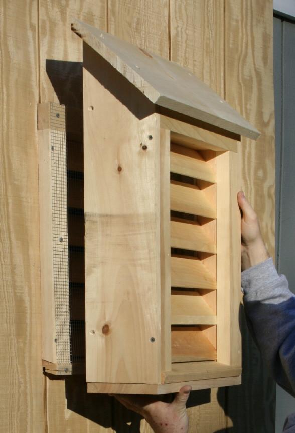 Best ideas about DIY Bat House . Save or Pin Bat Guys The Suburban Bat House Now.