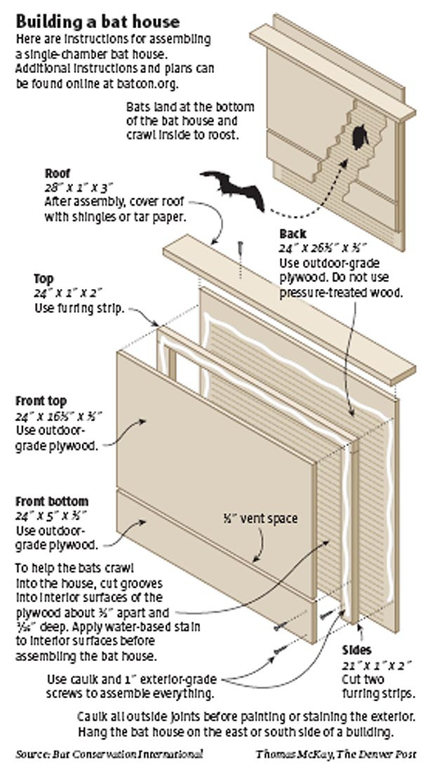 Best ideas about DIY Bat House . Save or Pin Bat houses on Pinterest Now.