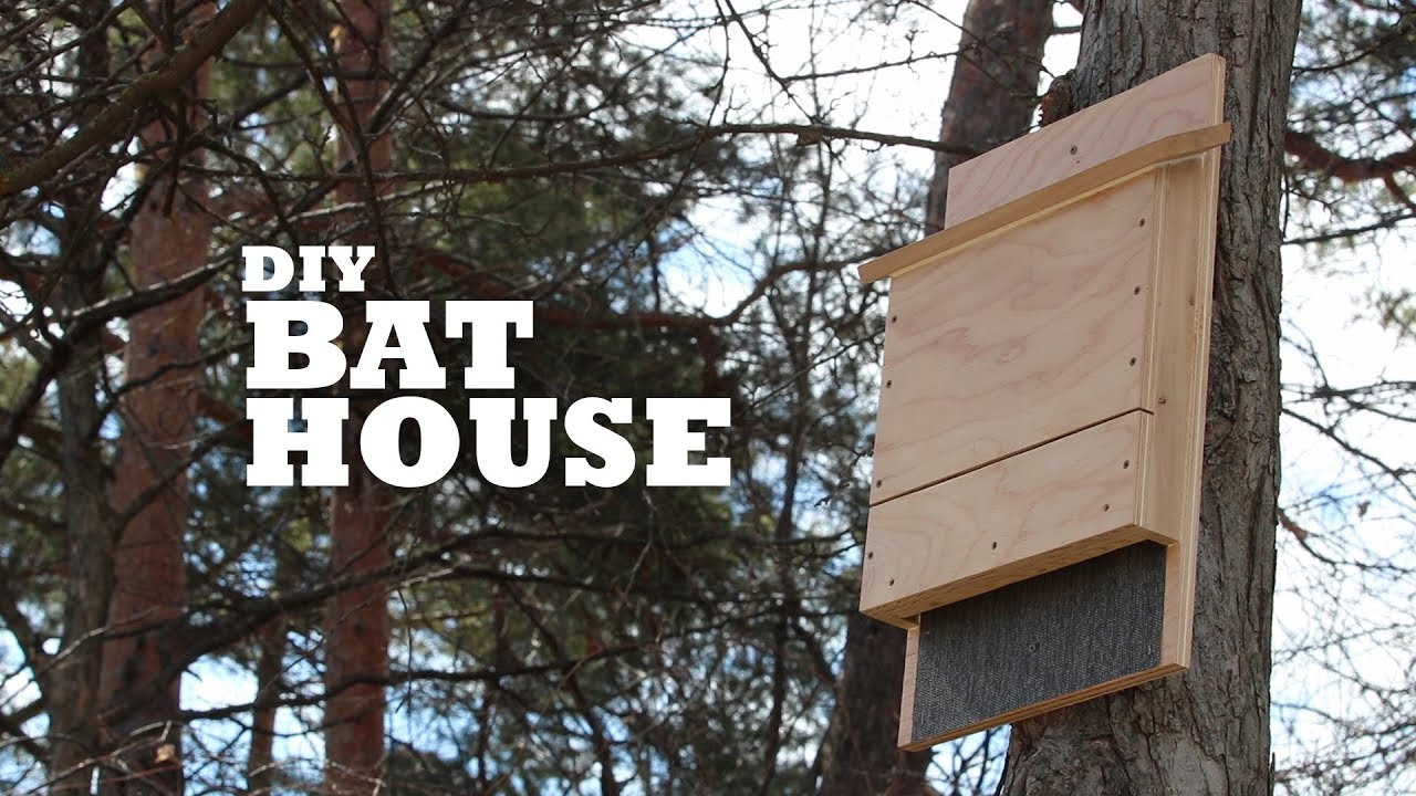 Best ideas about DIY Bat House . Save or Pin DIY Bat House Now.