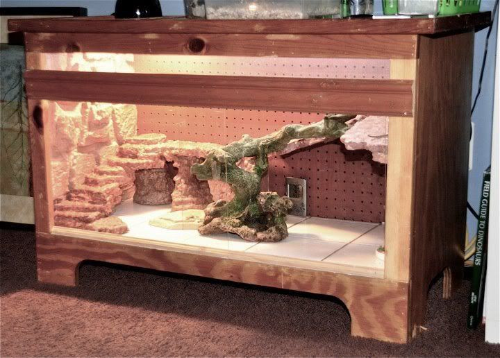 Best ideas about DIY Bearded Dragon Cage . Save or Pin Bearded Dragon Vivarium Furniture Now.