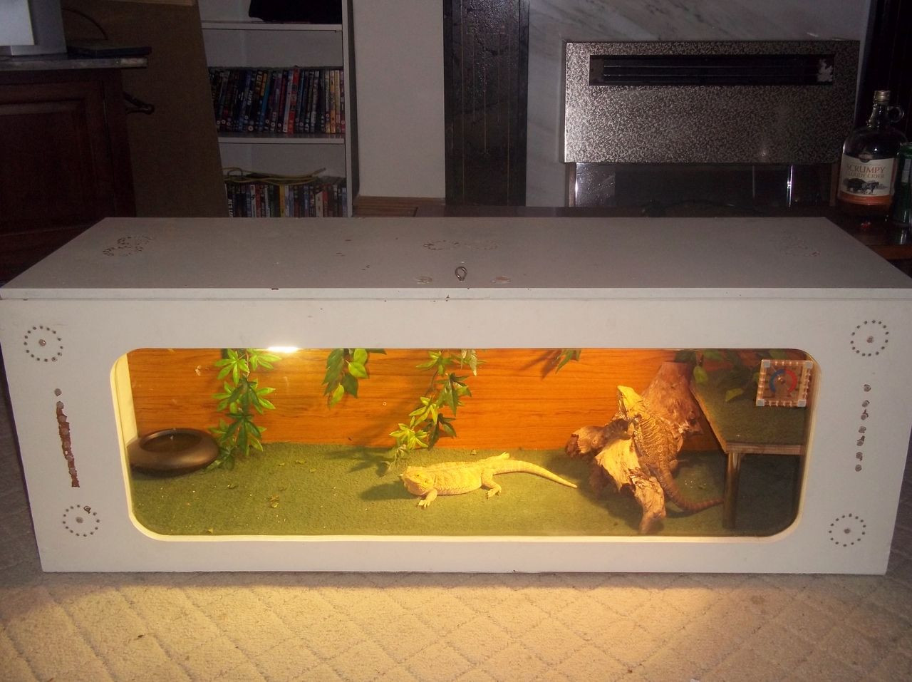 Best ideas about DIY Bearded Dragon Cage . Save or Pin Diy bearded dragon enclosure Now.