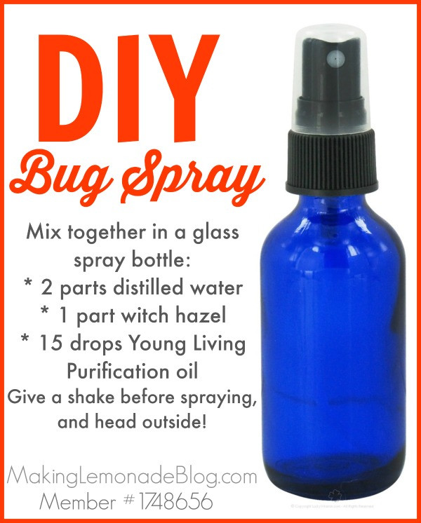 Best ideas about DIY Bed Bug Spray . Save or Pin Homemade Outdoor & Camping Spray Bugs HATE It  Now.