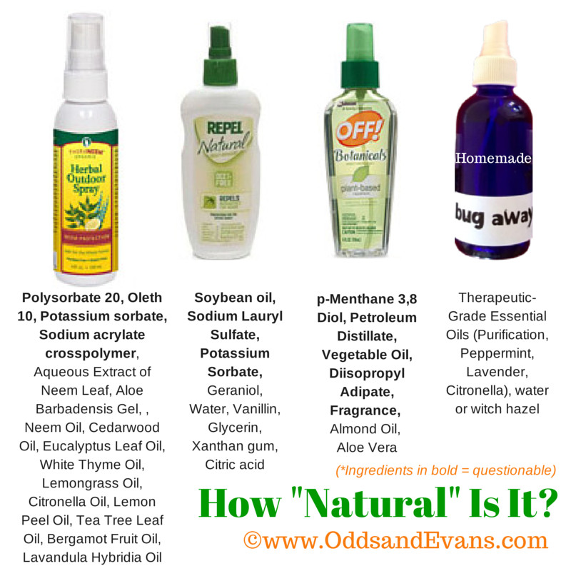 Best ideas about DIY Bed Bug Spray . Save or Pin Homemade Bug Spray to Scare Away Bugs with Natural Ingre nts Now.