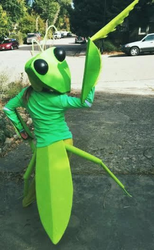 Best ideas about DIY Bug Costume . Save or Pin DIY Costume and Halloween Costume Ideas for Kids DIY Now.