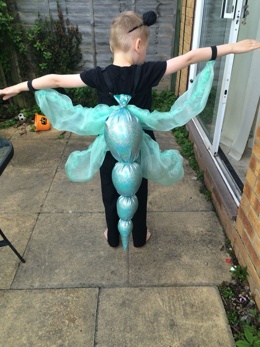 Best ideas about DIY Bug Costume . Save or Pin Dragonfly costume ugly bug ball Now.