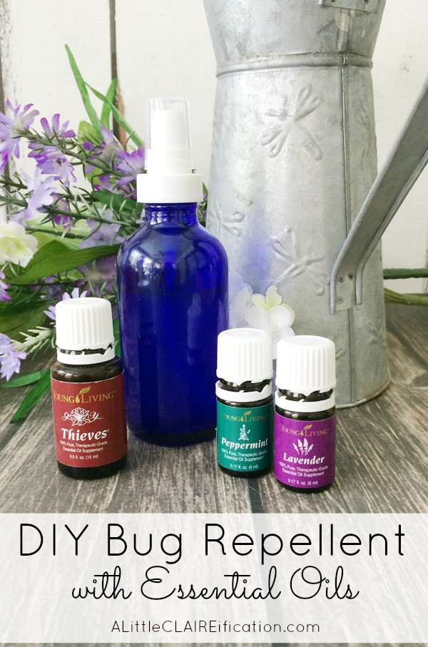 Best ideas about DIY Bug Spray . Save or Pin How To Make Your Own Bug Spray Now.