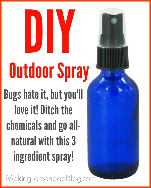 Best ideas about DIY Bug Spray . Save or Pin Homemade Outdoor & Camping Spray Bugs HATE It  Now.