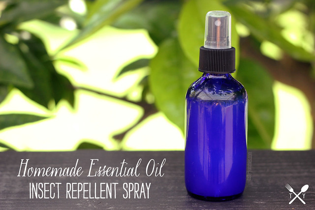Best ideas about DIY Bug Spray . Save or Pin How to Make Homemade Essential Oil Insect Repellent Spray Now.