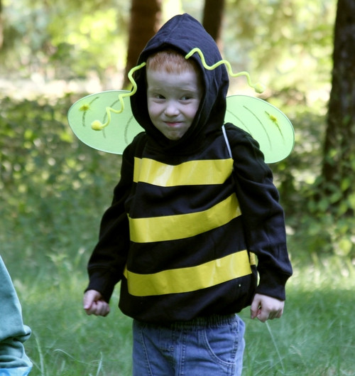 Best ideas about DIY Bumblebee Costume . Save or Pin Make a No Sew Bumblebee Costume Dollar Store Crafts Now.