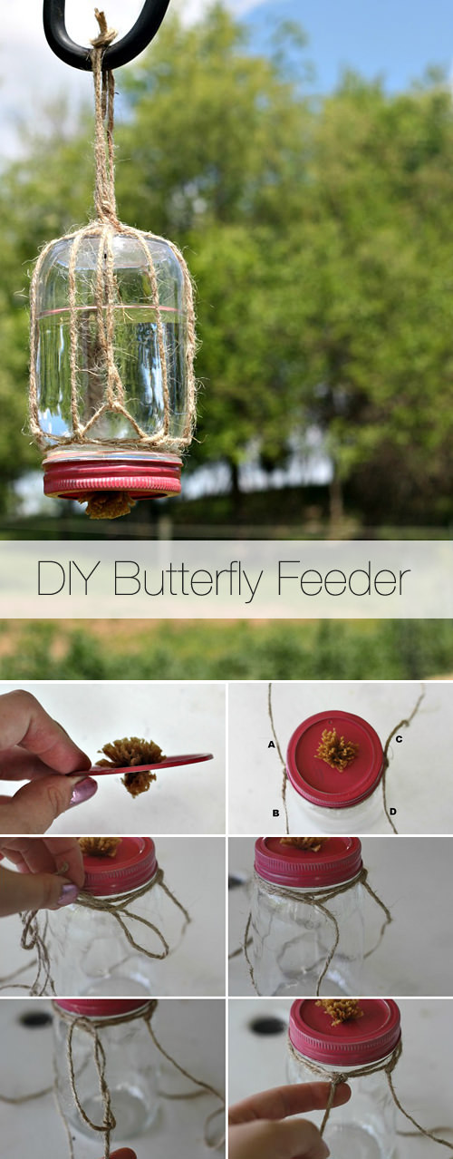 Best ideas about DIY Butterfly Feeder . Save or Pin Bring in the Butterflies Now.
