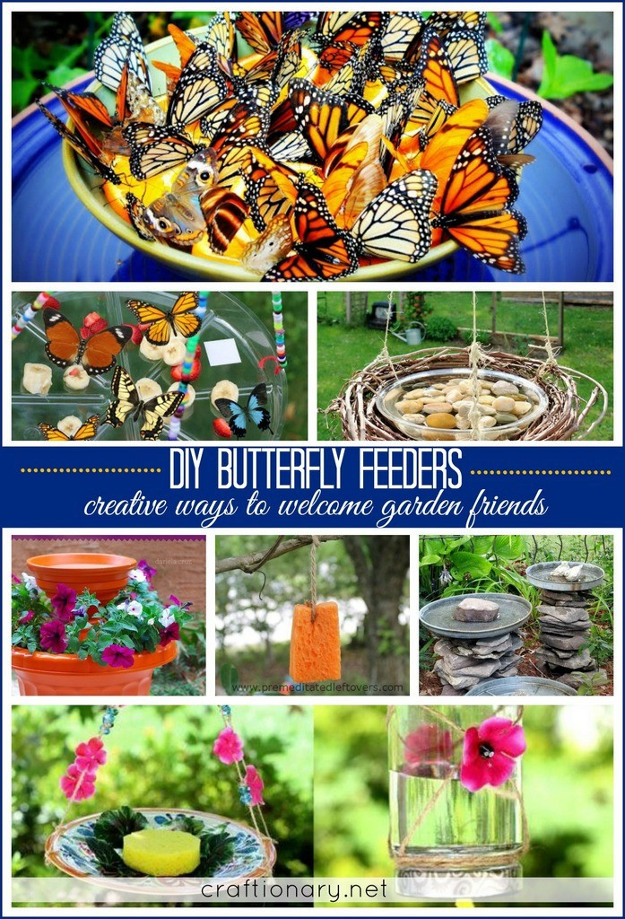 Best ideas about DIY Butterfly Feeder . Save or Pin Craftionary Now.