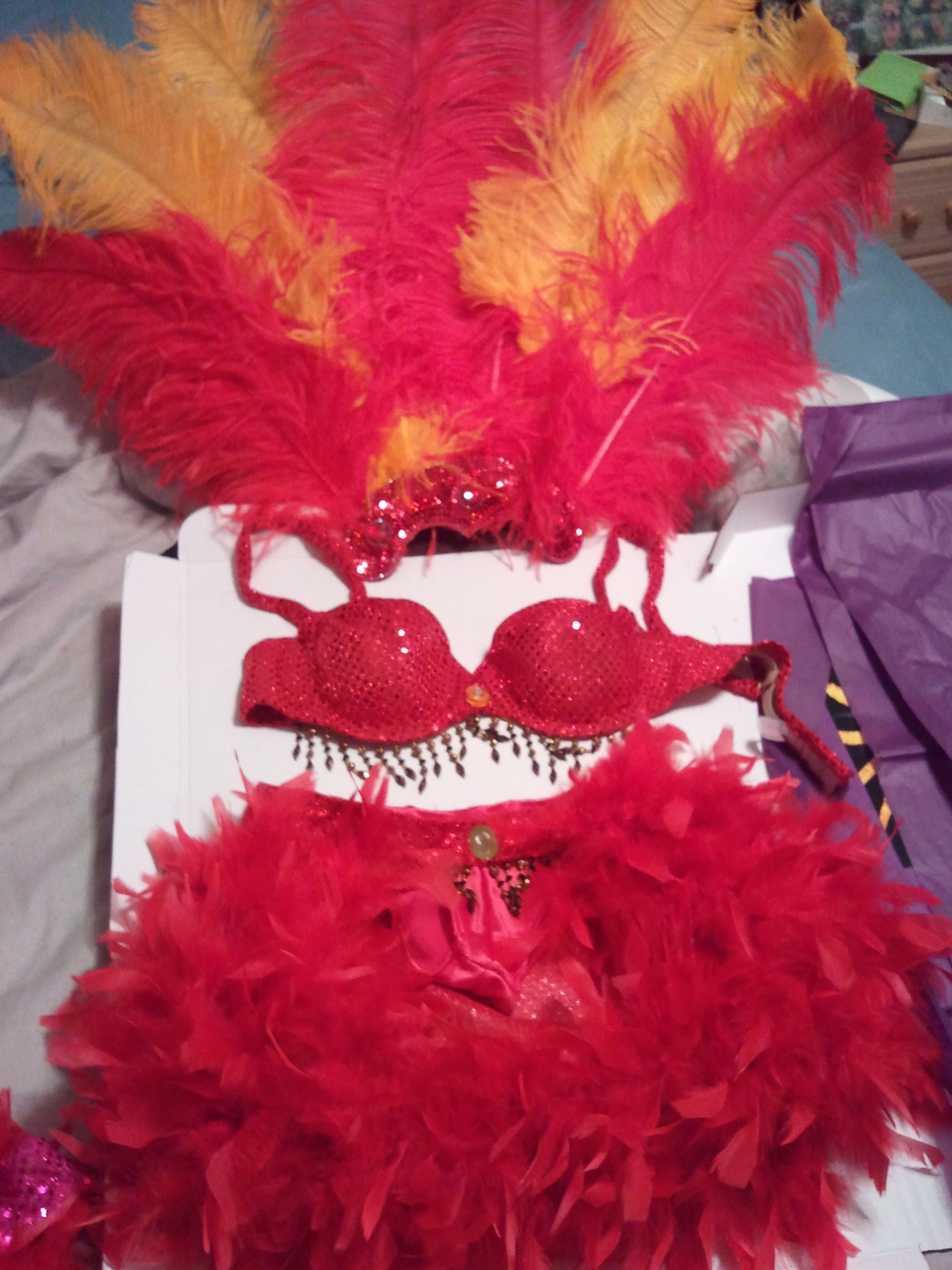 Best ideas about DIY Carnival Costume . Save or Pin Samba Costume great for beginners home made Now.