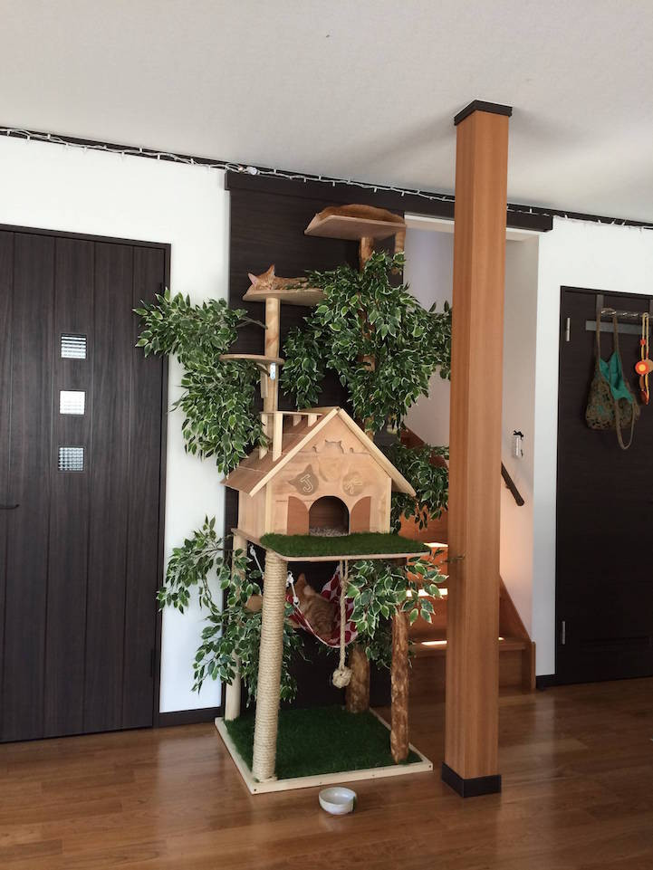 Best ideas about DIY Cat Scratching Post Plans . Save or Pin DIY Cat Tree fers Alternative to Conventional Scratching Now.