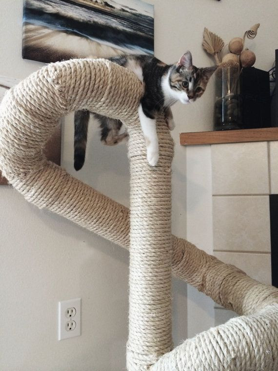 Best ideas about DIY Cat Scratching Post Plans . Save or Pin Best 25 Cat scratching post ideas on Pinterest Now.