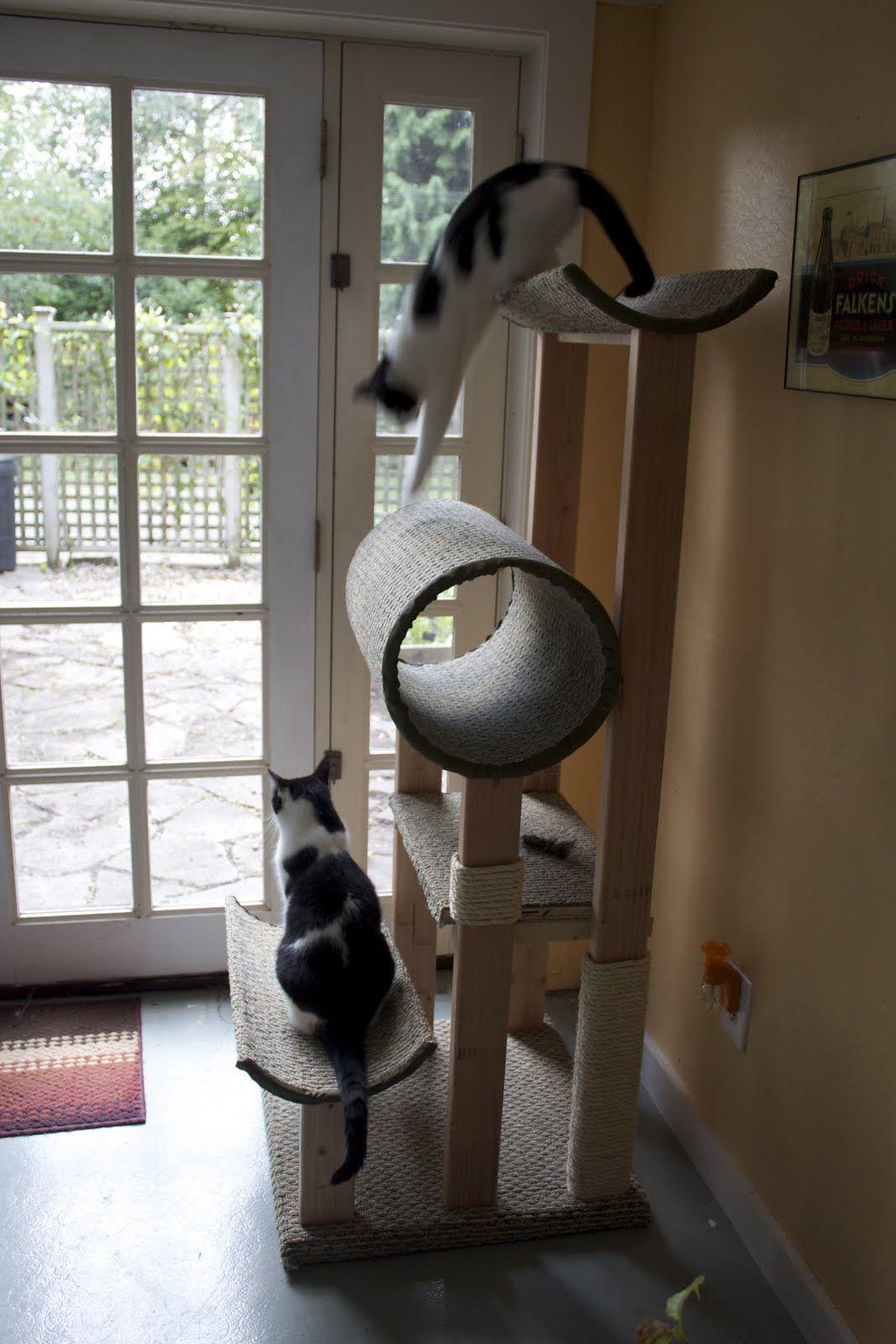 Best ideas about DIY Cat Scratching Post Plans . Save or Pin diy cat scratching post a very ambitious project but Now.