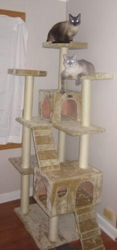 Best ideas about DIY Cat Scratching Post Plans . Save or Pin How To Make a Sisal Rope Cat Scratching Post Now.