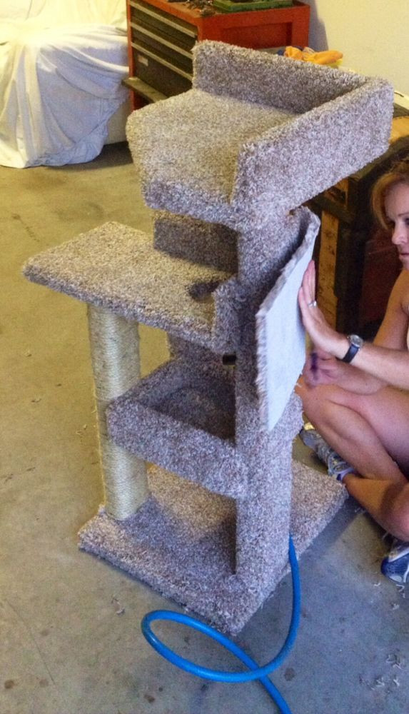 Best ideas about DIY Cat Scratching Post Plans . Save or Pin diy kitty scratching post bed build diy pets animals Now.
