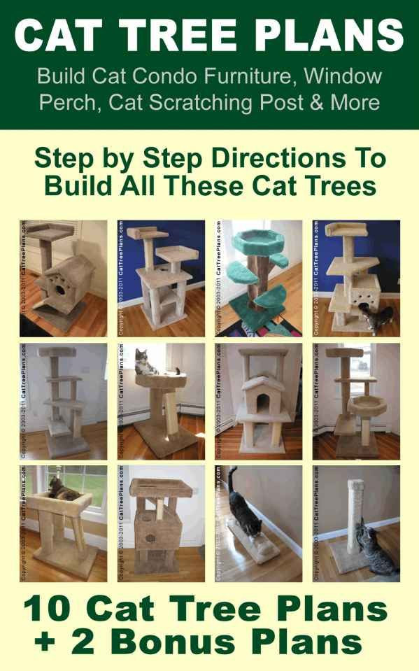 Best ideas about DIY Cat Scratching Post Plans . Save or Pin Best 25 Homemade cat trees ideas on Pinterest Now.