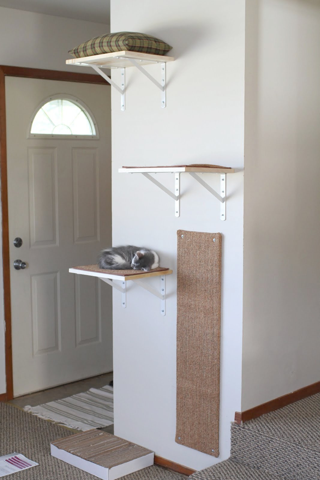 Best ideas about DIY Cat Wall Shelves . Save or Pin Now.