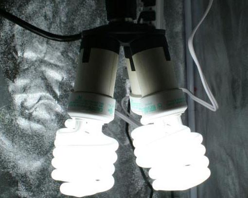 Best ideas about DIY Cfl Grow Light . Save or Pin DIY CFL Grow Light Now.