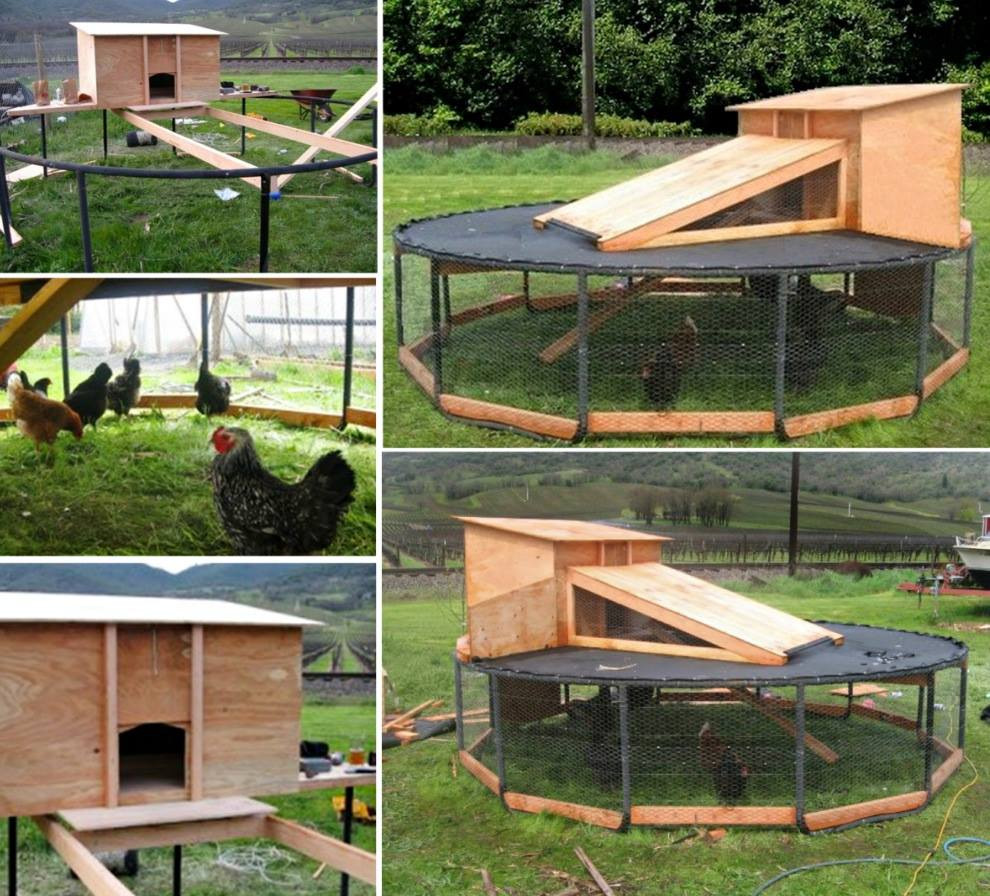 Best ideas about DIY Chicken Coops . Save or Pin Wonderful DIY Recycled Chicken Coops Now.